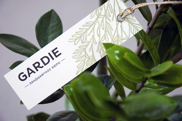 Logo and tag with hand drawn coloured pencil plant illustrations by Paradox Box for landscaping business Gardie