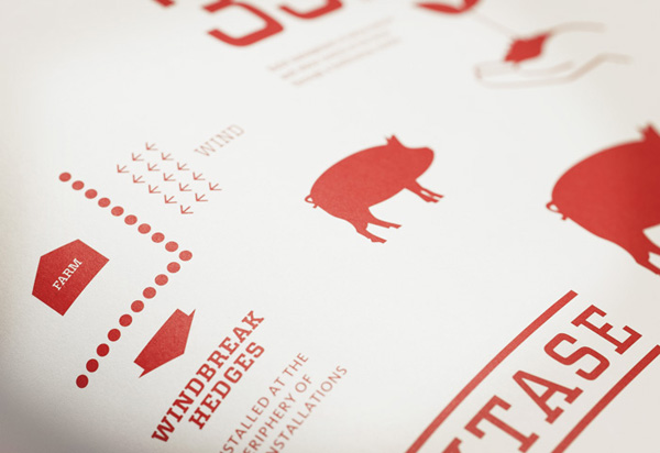 illustrations for Canadian pork producer and family run butcher F. Ménard designed by lg2boutique