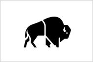 Logo - Buffalo Systems