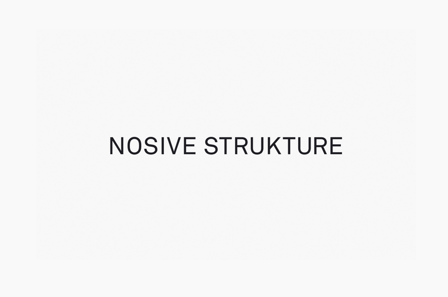 Logo for structural engineering firm Nosive Strukture designed by Bunch