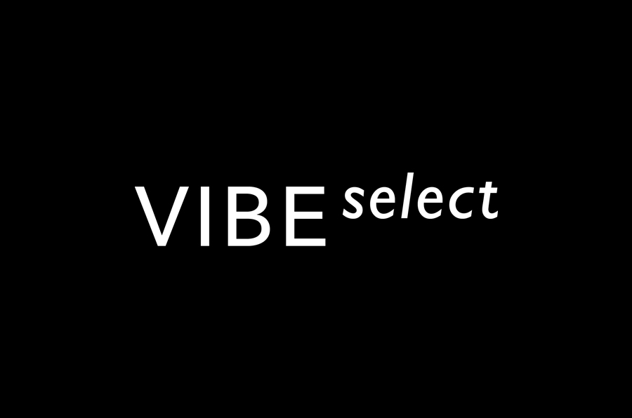 Sans-serif logotype for architectural firm Vibe Select designed by Studio Constantine