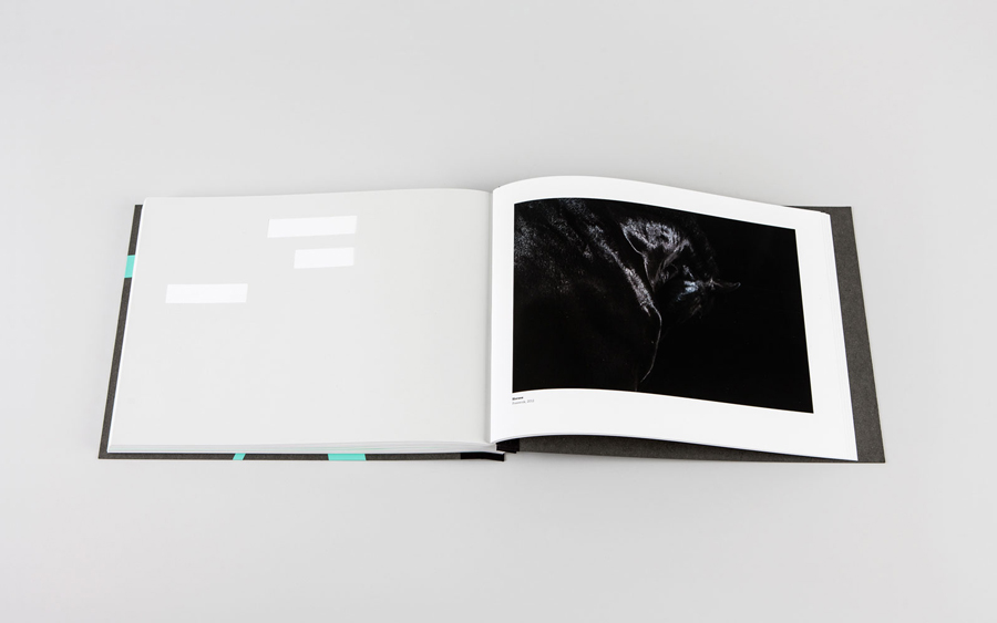 Book designed by LSDK for Frederik Laux Photography