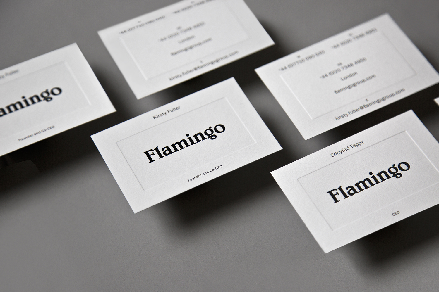 Brand Identity for Flamingo by Bibliotheque, United Kingdom