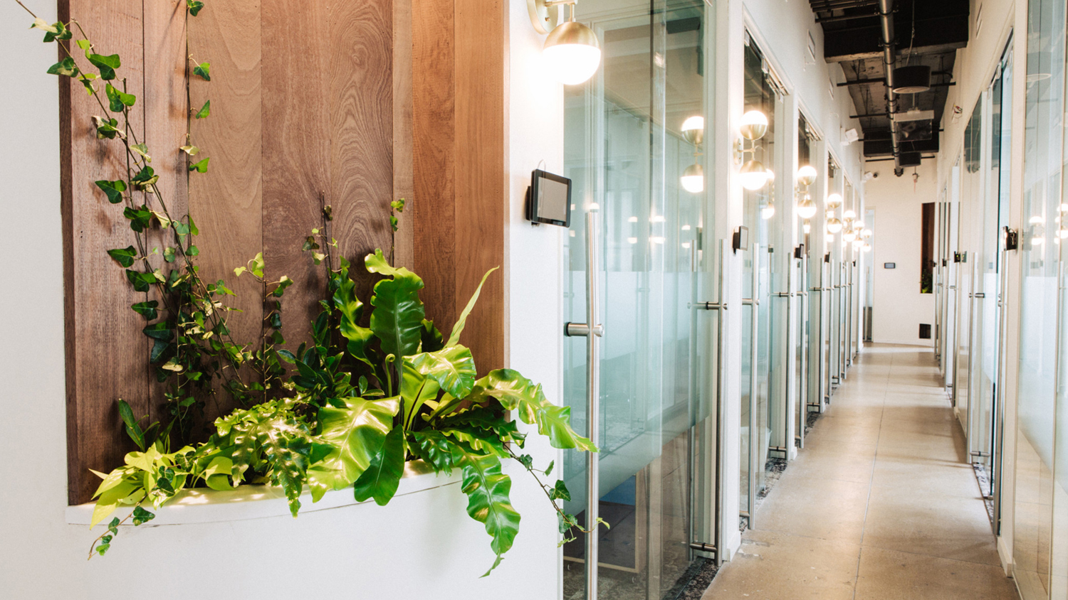 Interior of New York co-working concept Primary