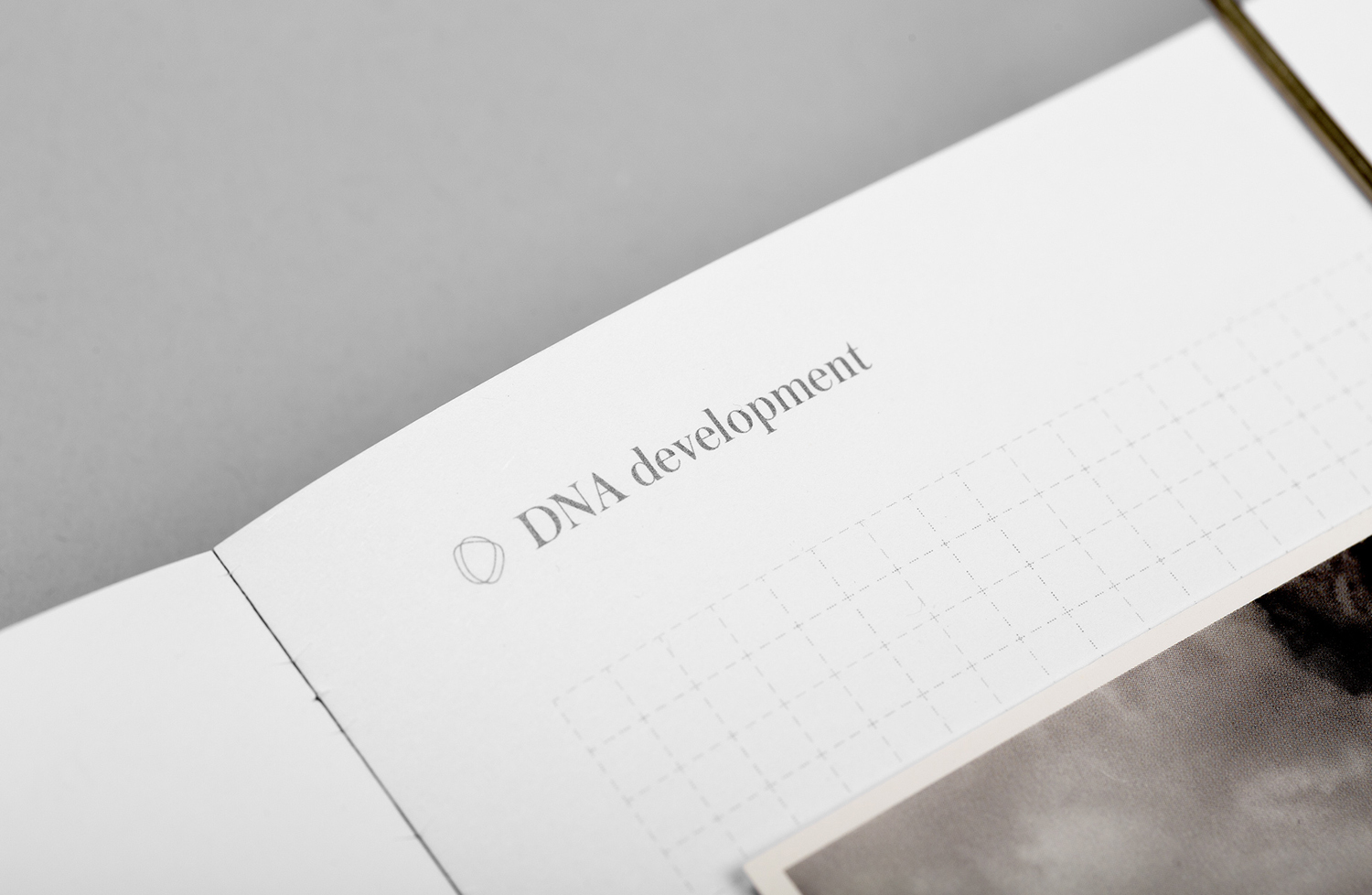 Brand identity and notebook for real estate investment and development business DNA development by Face