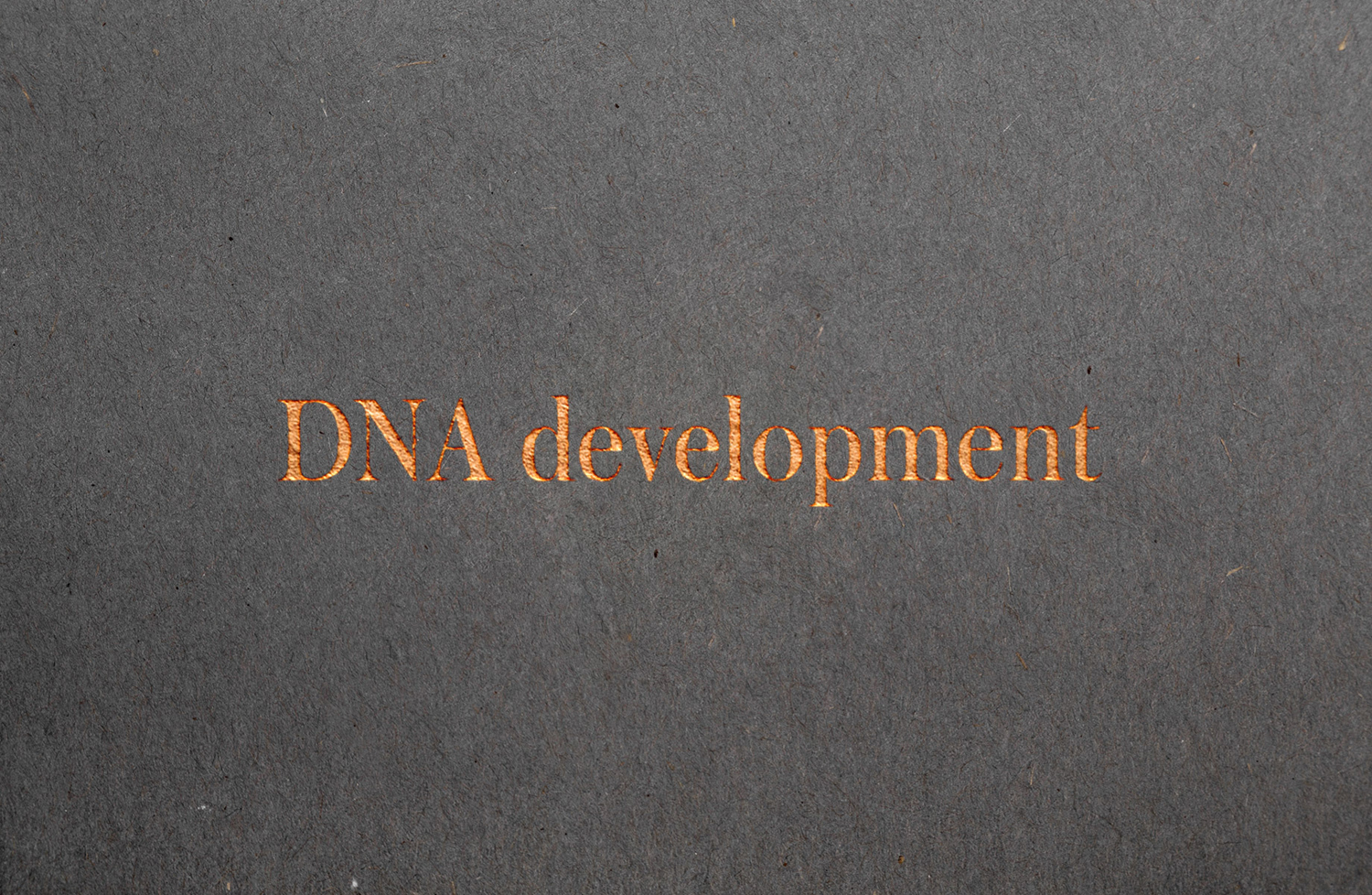 Brand identity and copper block foiled logotype for real estate investment and development business DNA development by Face