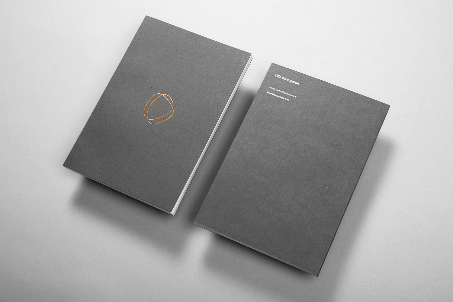 Brand identity, white foiled notebook for real estate investment and development business DNA development by Face