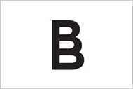 Logo - Born Builders